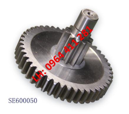 SE600050